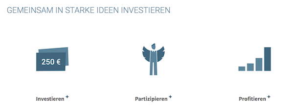 Seedmatch Investition